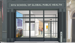 New York University - School of Global Public Health