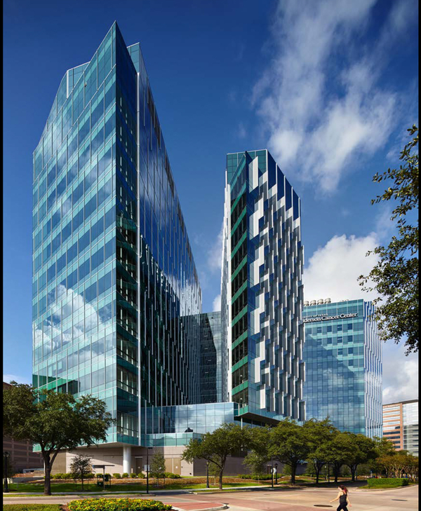 University of Texas MD Anderson Cancer Center, Zayed