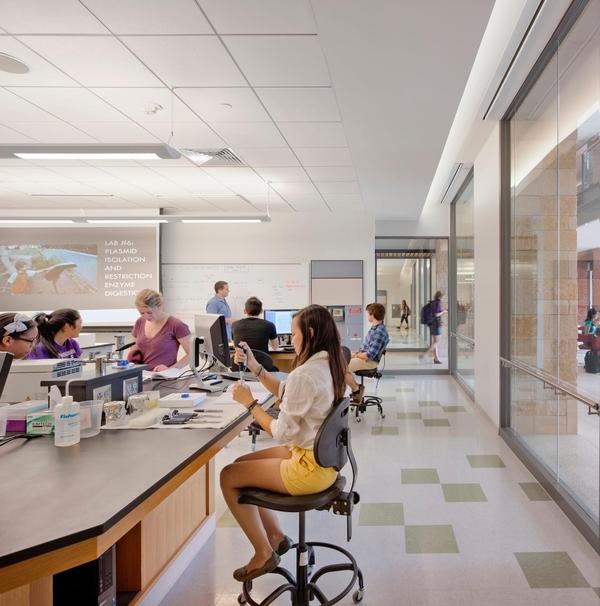 Undergraduate Biology Teaching Lab